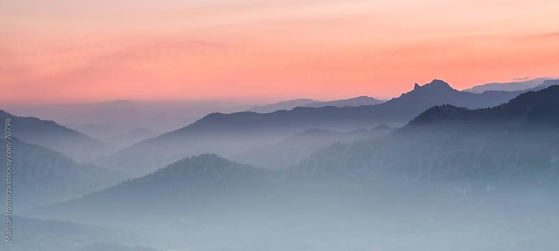 Misty Morning by Marilar Irastorza for Stocksy United