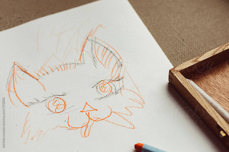 Drawing of a cat by michela ravasio for Stocksy United