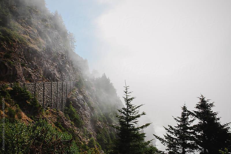 Oregon Coast Road Along Cliff by Kristine Weilert for Stocksy United