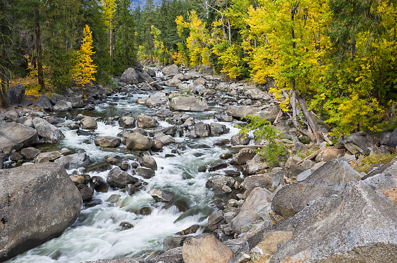 Icicle Creek in Autumn by Mark Windom for Stocksy United