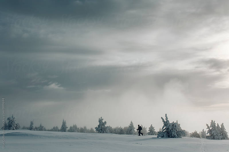 Skier ski touring through the frozen trees by Blue Collectors for Stocksy United