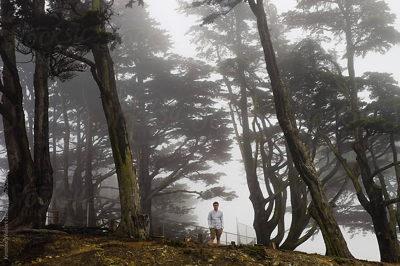 Man standing in trees surrounded by fog by Kristine Weilert for Stocksy United