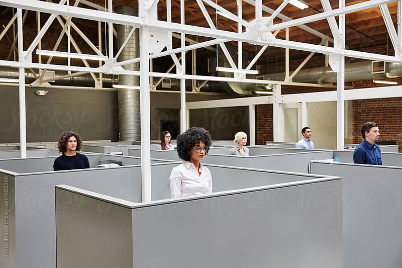 Millennials standing in cubicles at start up business by Trinette Reed for Stocksy United