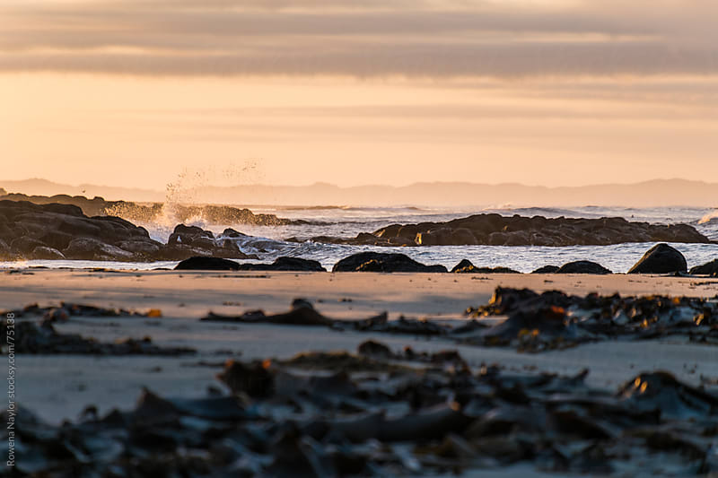 Surf Crashing onshore at sunrise on a Winter beach by Rowena Naylor for Stocksy United