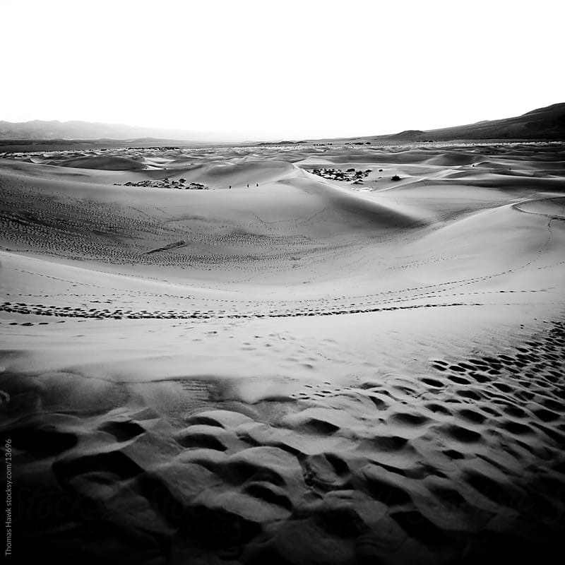 Death Valley Dunes by Thomas Hawk for Stocksy United