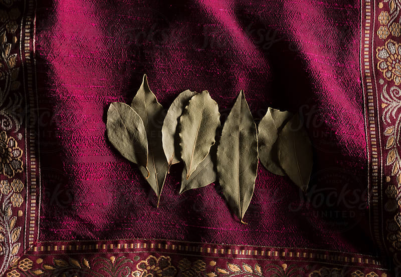 Bay Leaves on Purple with Copyspace by Jeff Wasserman for Stocksy United