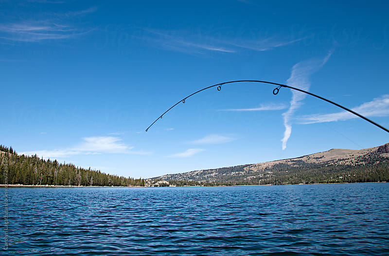 Bent fishing pole in a lake - Fish on! by Carolyn Lagattuta for Stocksy United