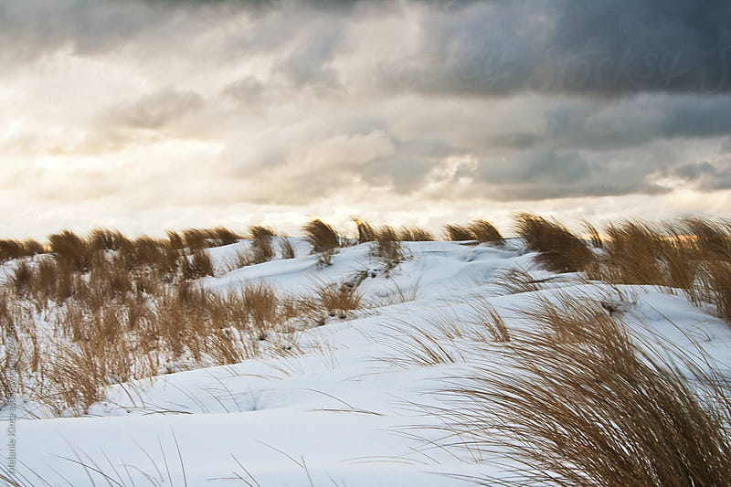 Dunes at the sea in winter at sunset by Melanie Kintz for Stocksy United