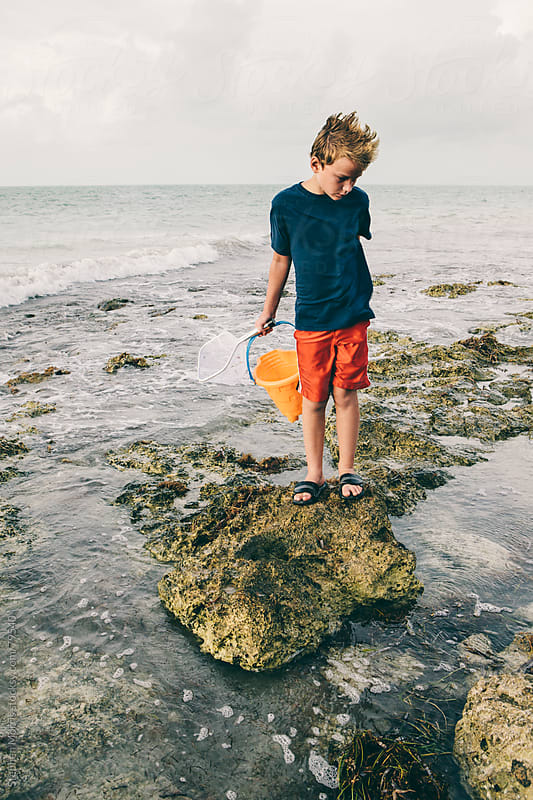 Boy Catching Crabs on Rocky Shore by Stephen Morris for Stocksy United
