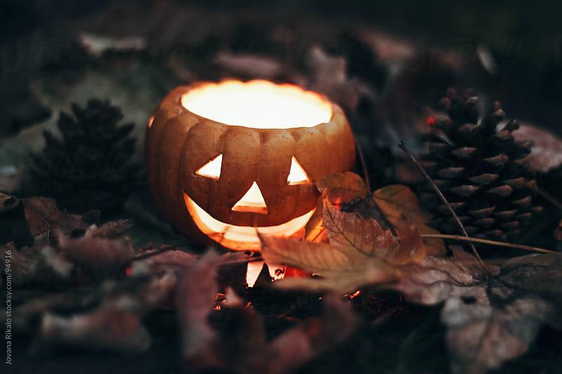 Halloween decoration by Jovana Rikalo for Stocksy United