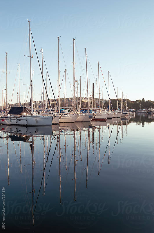 Calm day in the marina by Jill Chen for Stocksy United