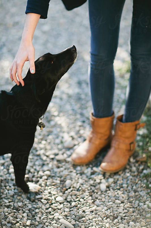 Girl wearing boots and jeans bending down to caress a little black dog in sunny garden by Laura Stolfi for Stocksy United