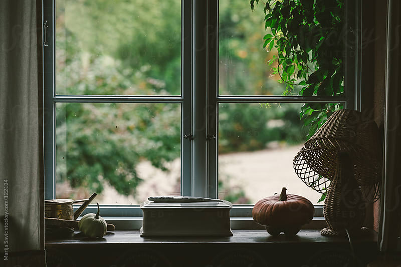 View from closed Rustic Window. by Marija Savic for Stocksy United