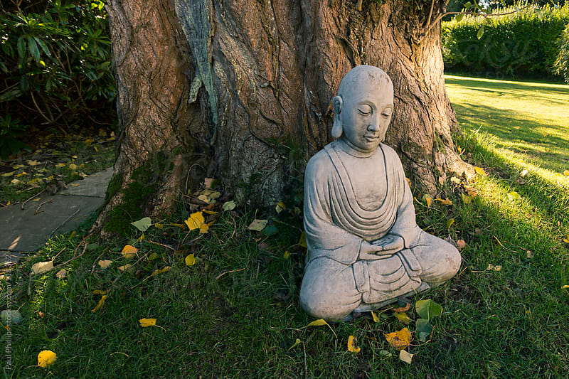 Stone carving of the buddha sitting by a tree in a sunny garden by Paul Phillips for Stocksy United