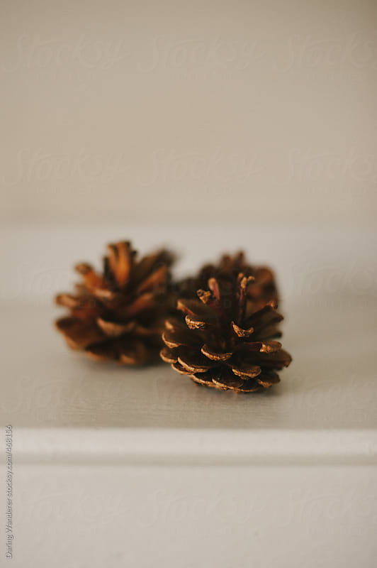 Simple festive Christmas decor pinecones by Daring Wanderer for Stocksy United