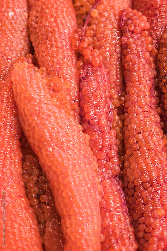 Salmon Roe at Tsukiji Market, Tokyo Fish Market by Rowena Naylor for Stocksy United