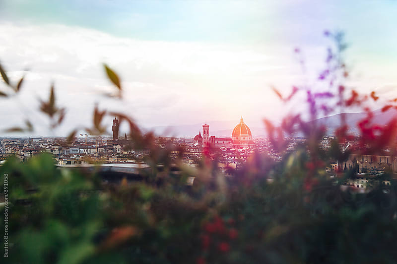 Il Duomo of Florence framed by bushes by Beatrix Boros for Stocksy United