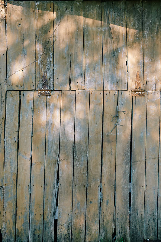 Texture of old distressed wooden barn planks with sunlight and shadows by Greg Schmigel for Stocksy United