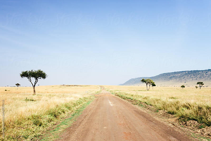 Kenyan Road by Agencia for Stocksy United