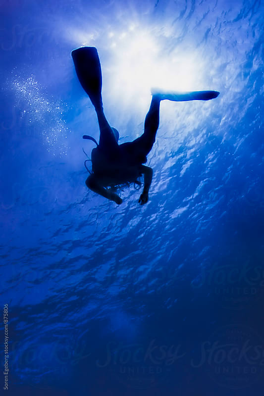 Scuba diver in silhouette swimming under water by Søren Egeberg Photography for Stocksy United