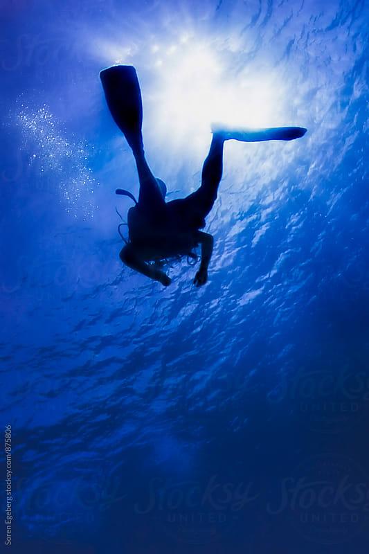 Scuba diver in silhouette swimming under water by Soren Egeberg for Stocksy United