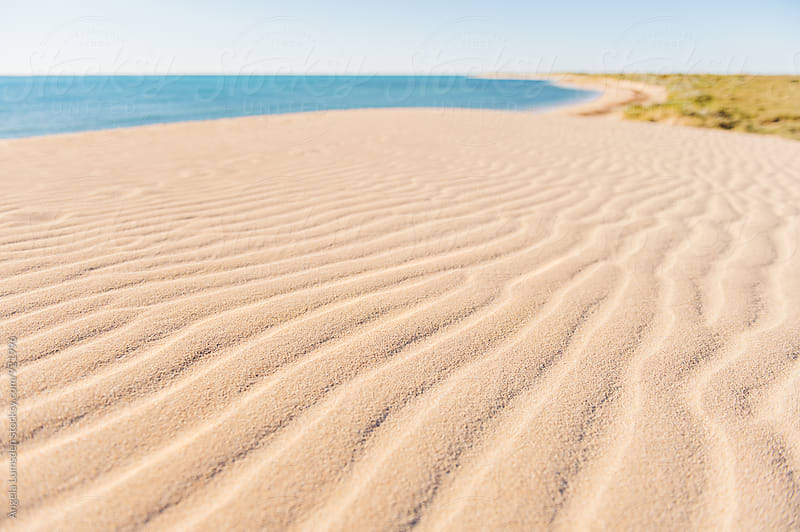 Wind blown ripples in the sand of the large dunes of the Ningaloo Coast by Angela Lumsden for Stocksy United