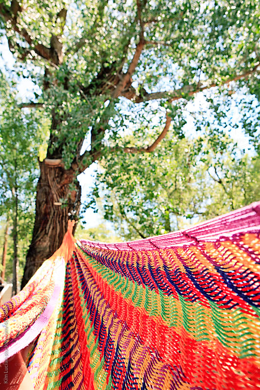 Hammock Between Trees by Kim Lucian for Stocksy United