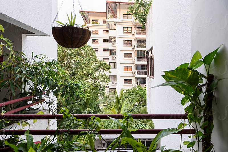 Balcony with green plants by Lawren Lu for Stocksy United