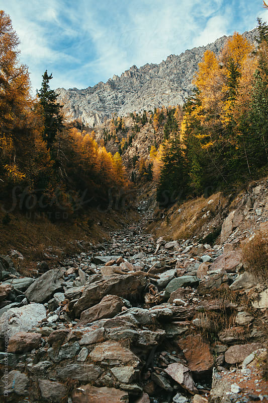 Mountain river in late autumn by Davide Illini for Stocksy United