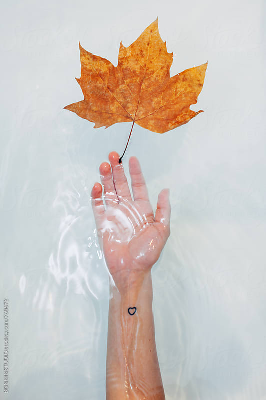 Overhead of a hand with a leaf underwater in the bathtub. by BONNINSTUDIO for Stocksy United