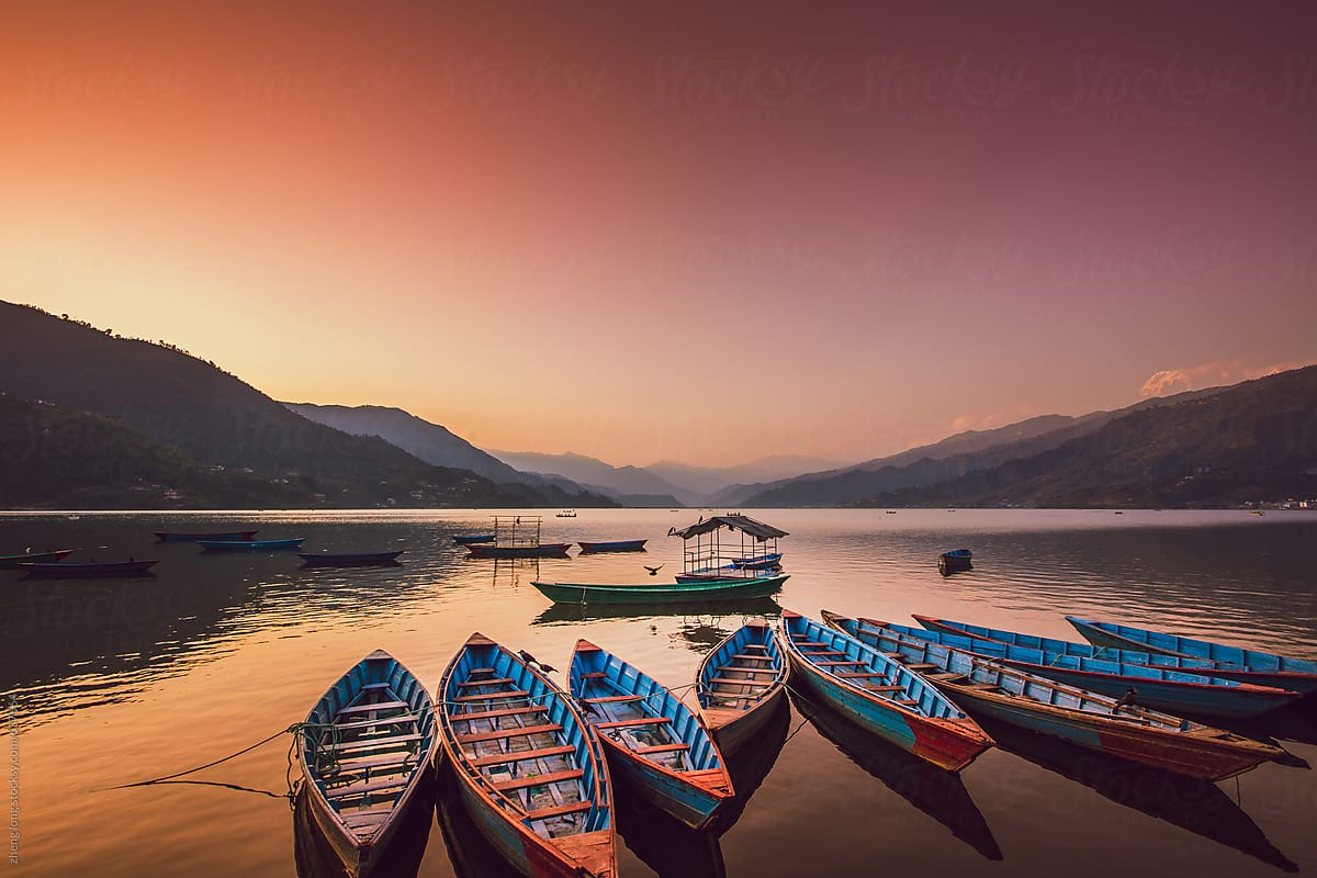 the boats in the phewa lake at sunset,Pokhara by zheng long ...