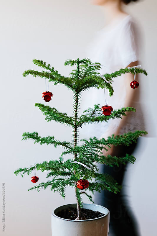 Movement shot of unrecognisable woman walking behind a small Christmas Tree - Vertical by Jacqui Miller for Stocksy United