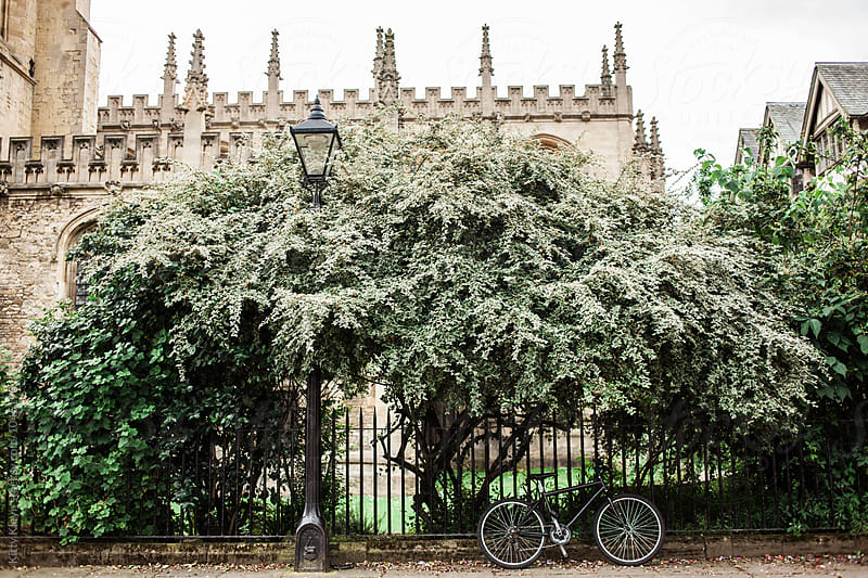 Bicycle in Oxford by Kitty Gallannaugh for Stocksy United