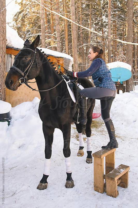 Female horseback rider sitting up on horse by T-REX & Flower for Stocksy United