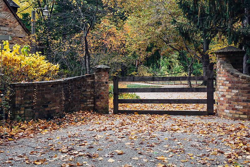 Wooden gate by Gabriel (Gabi) Bucataru for Stocksy United