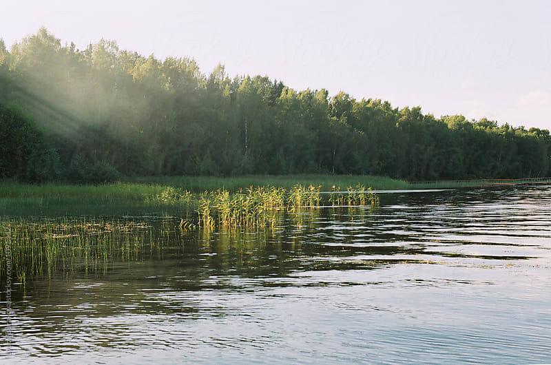 Lake in sunlight by Liubov Burakova for Stocksy United