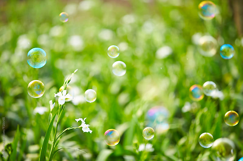 bubble flying in the spring field by Bo Bo for Stocksy United