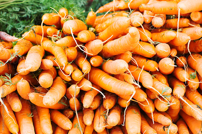 Bunches of carrots at market by Kristin Duvall for Stocksy United
