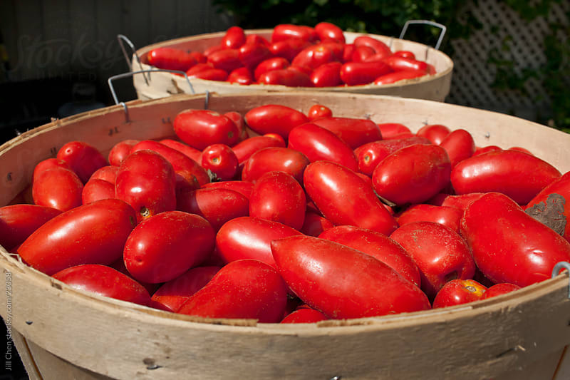 Bushel of Tomatoes by Jill Chen for Stocksy United