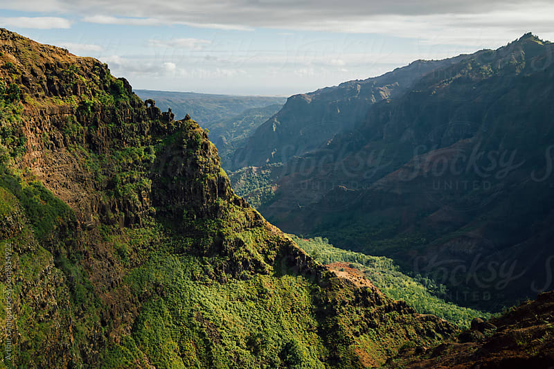 Waimea Canyon by Arthur Chang for Stocksy United