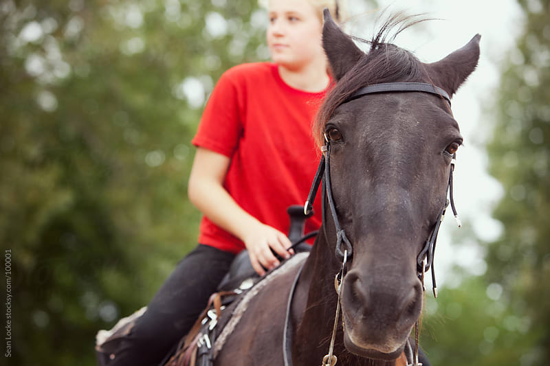 Equestrian: Horse Looking at Camera with Rider by Sean Locke for Stocksy United