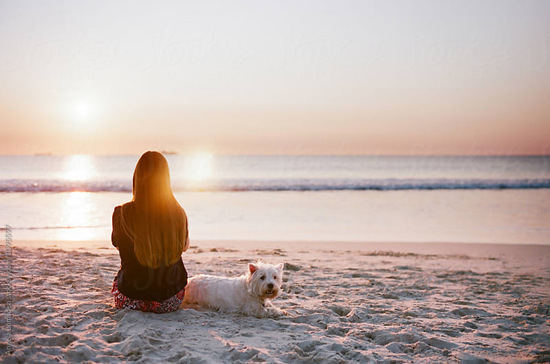 Teenage girl sitting at the beach with a white dog at sunset by Angela Lumsden for Stocksy United