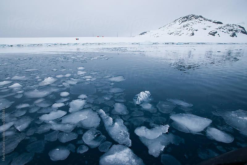 Antarctica - South Shetland Islands by Mark Pollard for Stocksy United