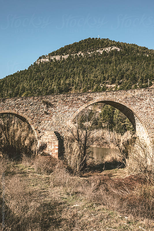 Arched bridge over a river. Sunny landscape.  by BONNINSTUDIO for Stocksy United