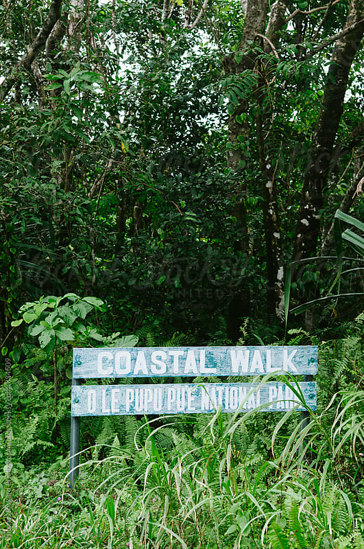 Coastal Walk sign and jungle, South Coast, Upola Island, Samoa. by Thomas Pickard for Stocksy United