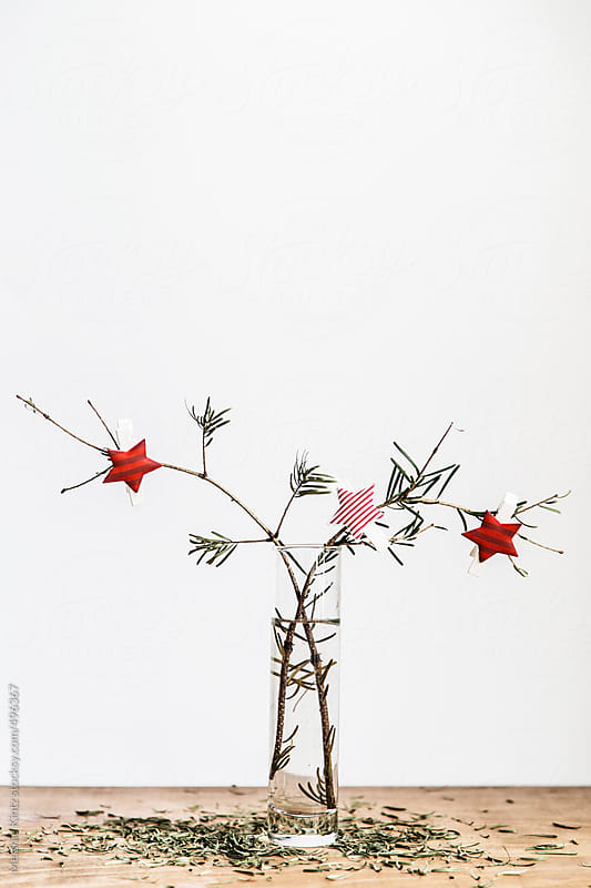 Two fir twigs having lost their needles after Christmas by Melanie Kintz for Stocksy United