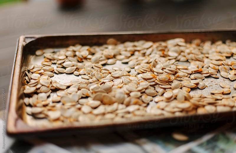 Hot out of the Oven Pumpkin Seeds by Raymond Forbes LLC for Stocksy United