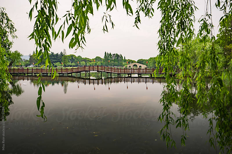 Chinese garden,Jangsu,China by Miss Rein for Stocksy United