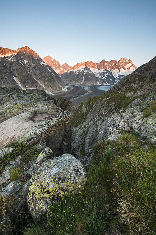 Sunrise from SAC Lauteraar mountain hut with Finsteraarhorn and  by Peter Wey for Stocksy United