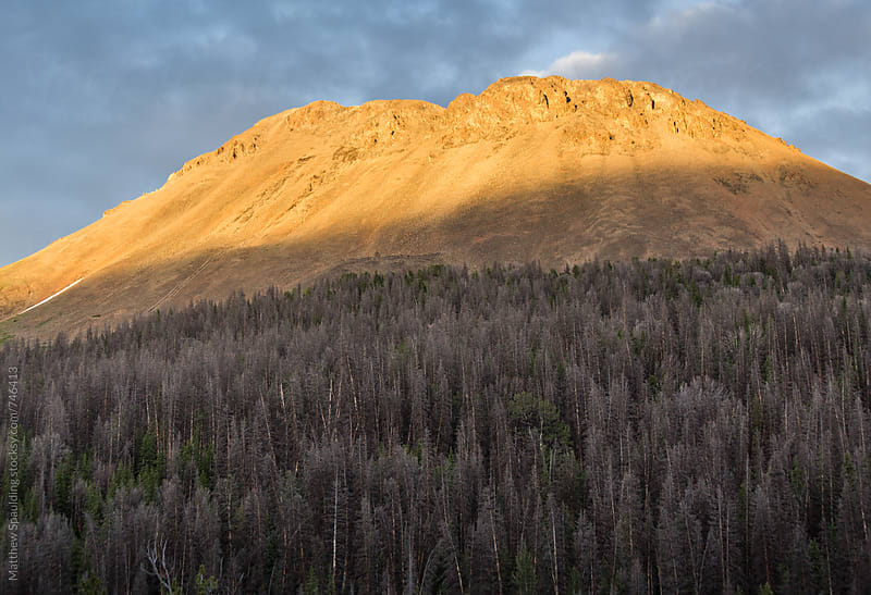 Remote rocky mountain landscape and trees at sunset by Matthew Spaulding for Stocksy United